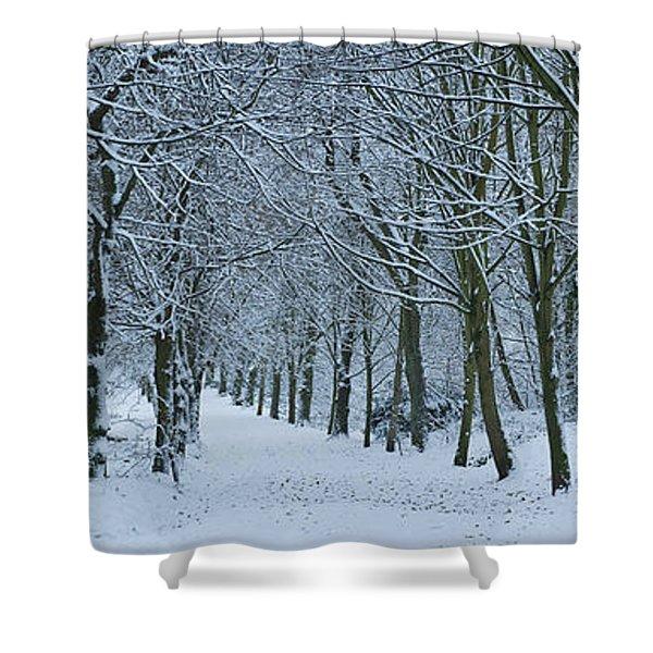 Hampstead Heath In Winter, North Shower Curtain