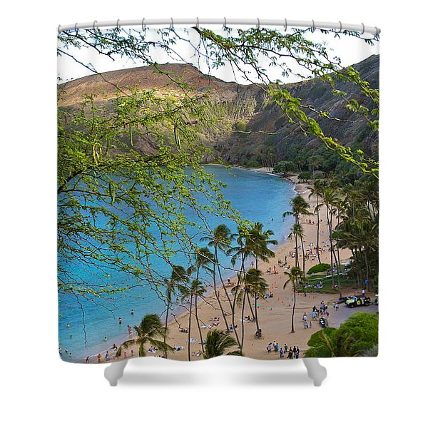 Hanauma Bay Nature Preserve Beach Through Monkeypod Tree Shower Curtain