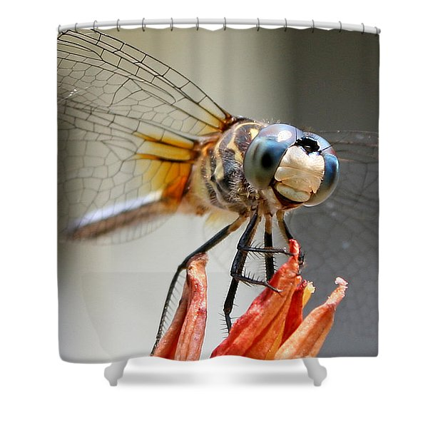 Happy Dragonfly Shower Curtain