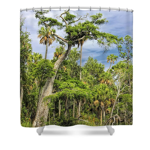 Hatrack Cypress Shower Curtain