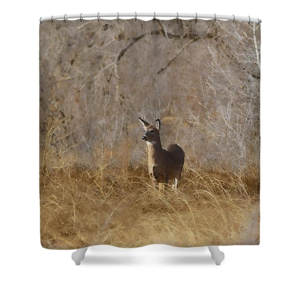 Having A Look Shower Curtain