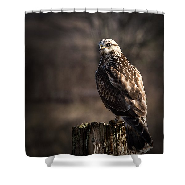 Hawk On A Post Shower Curtain