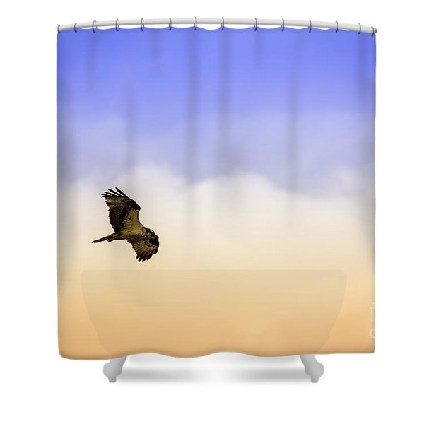 Hawk Over Head Shower Curtain
