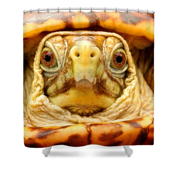 Head Shot Shower Curtain