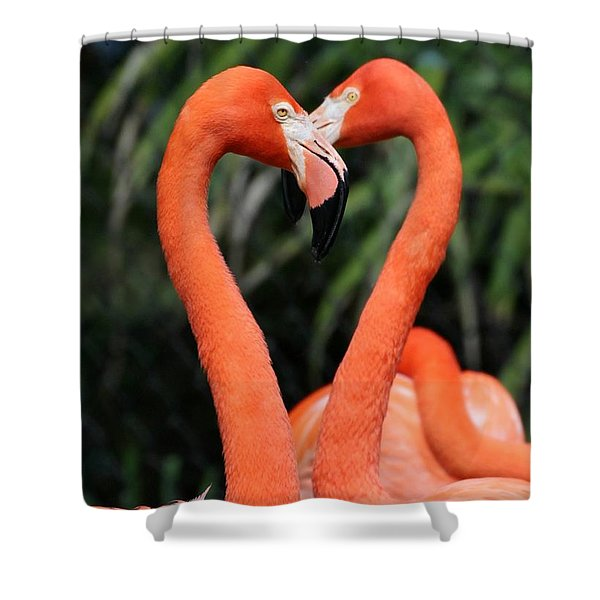 Heart To Heart Flamingo's Shower Curtain