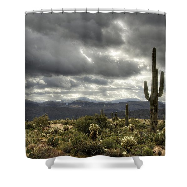 Heavenly Desert Skies  Shower Curtain