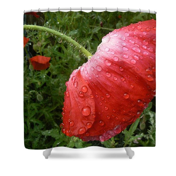 Heavy Head Poppy Shower Curtain