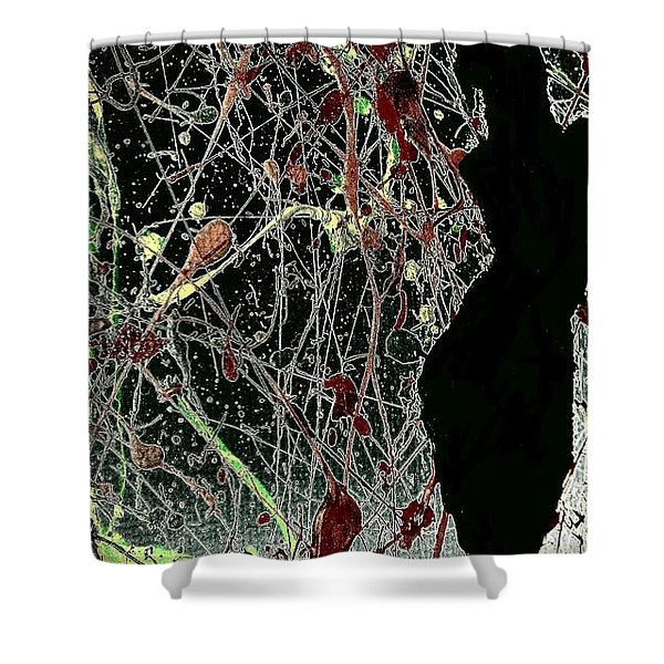 Her Crazy World Shower Curtain