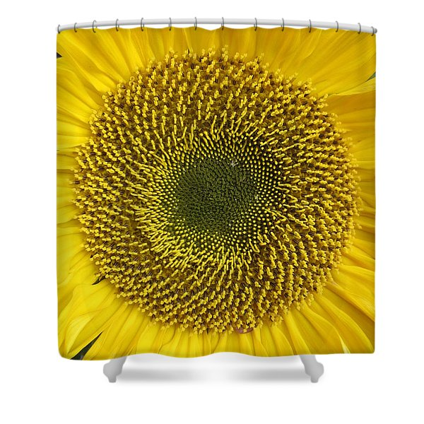 Here Comes The Sun.... Shower Curtain