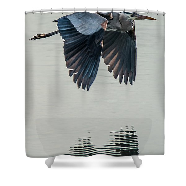 Heron On The Wing Shower Curtain