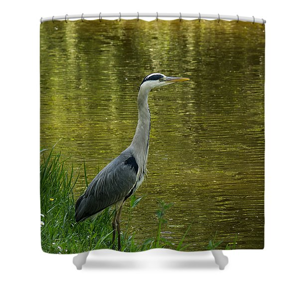 Heron Statue Shower Curtain