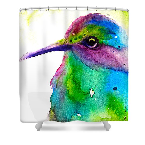 Hidden Shower Curtain