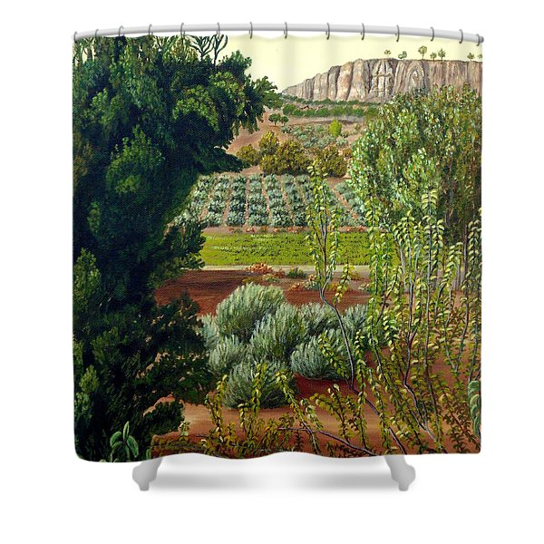 High Mountain Olive Trees  Shower Curtain