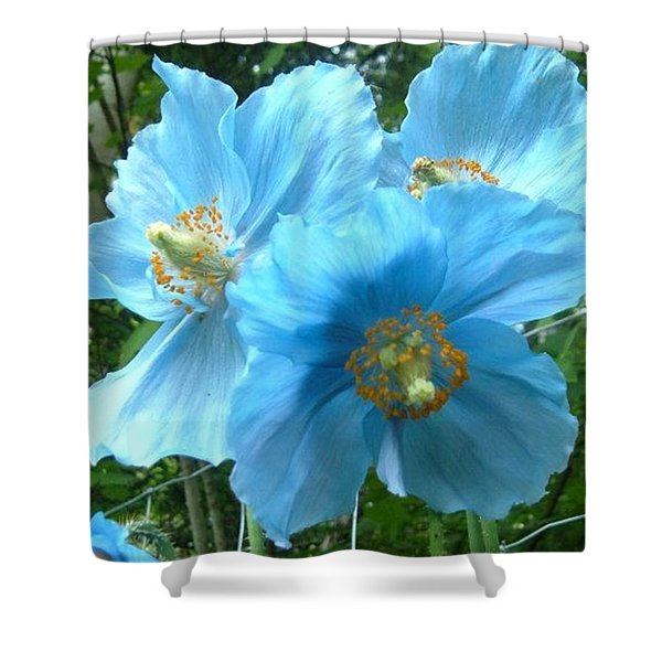 Himalayan Poppy Shower Curtain