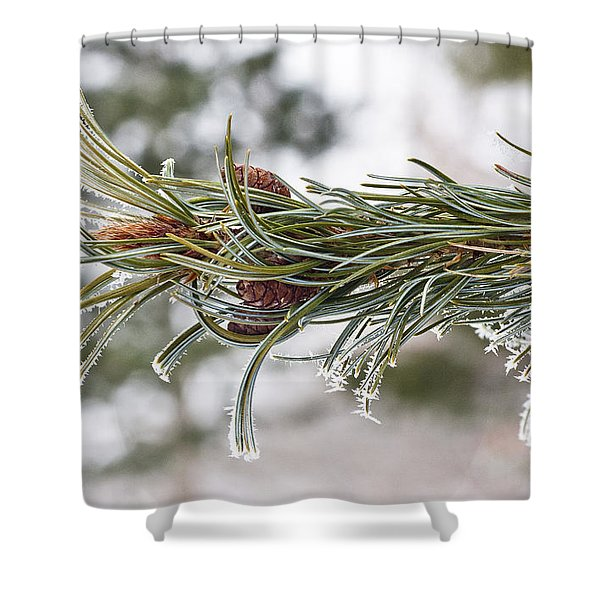 Hoar Frost Shower Curtain