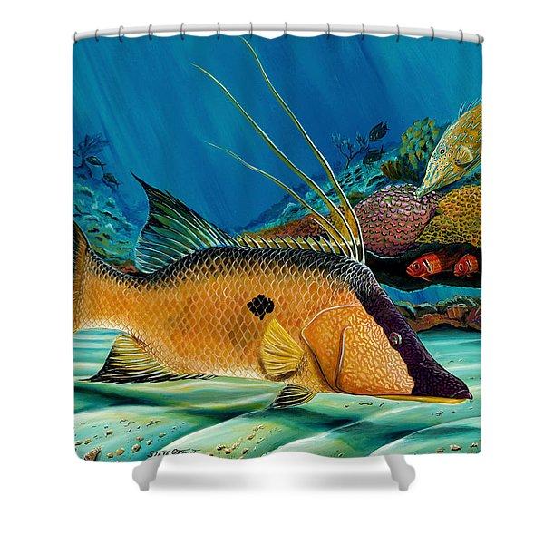 Hog And Filefish Shower Curtain