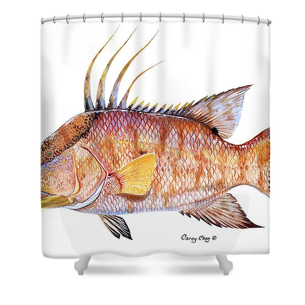 Hog Fish Shower Curtain