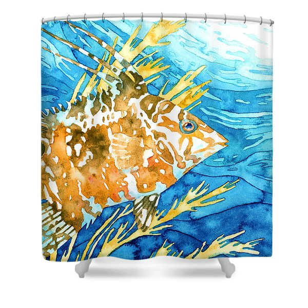 Hogfish Portrait Shower Curtain