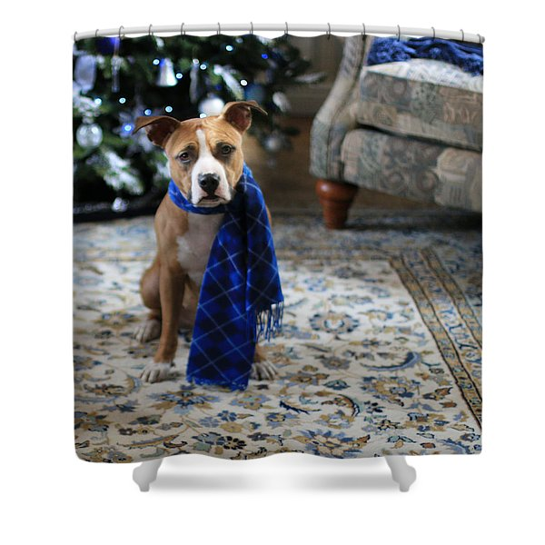 Holiday Warmth Shower Curtain