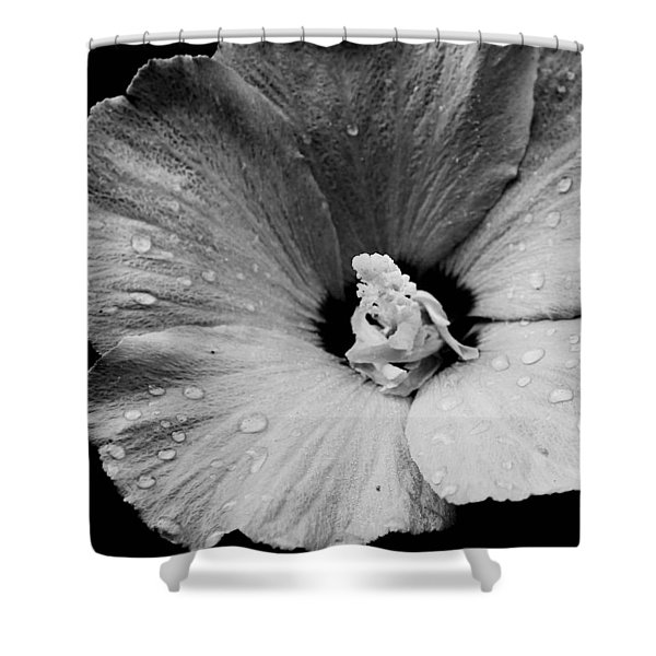 Hollyhock In Black And White Shower Curtain