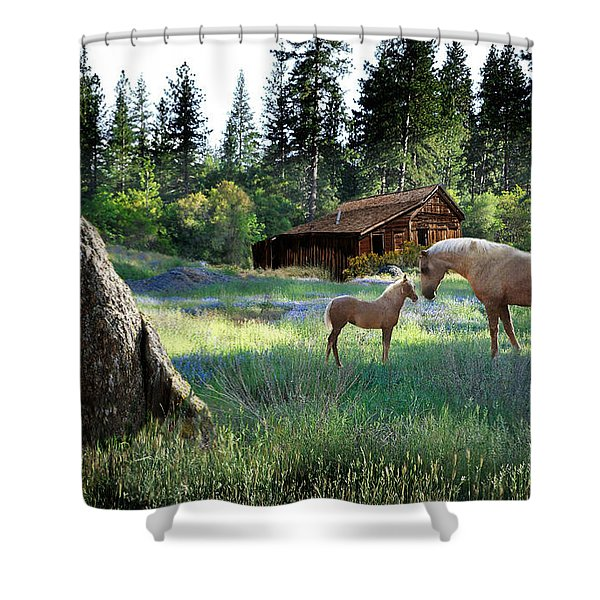 Home Sweet Home Shower Curtain