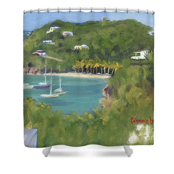 Birds Eye View Honeymoon Beach North Shower Curtain