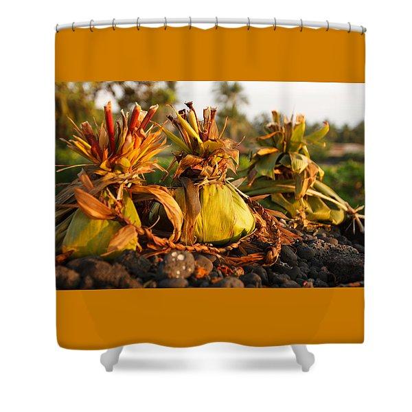 Hookupu At Sunset Shower Curtain