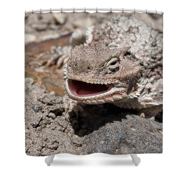 Horned Toad Smiling Shower Curtain