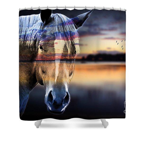 Horse 6 Shower Curtain
