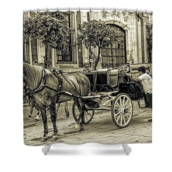 Horse And Buggy In Sevilla - Spain Shower Curtain