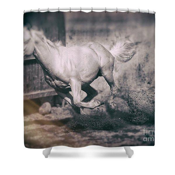 Horse Power Shower Curtain