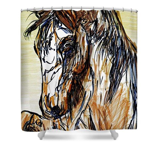 Horse Twins II Shower Curtain
