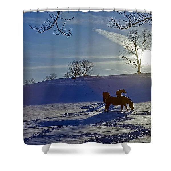 Horses In Snow Shower Curtain
