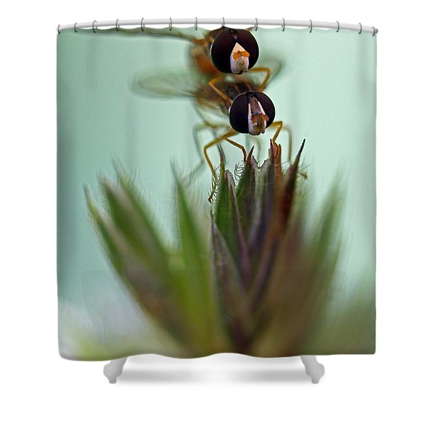 Hover Bugs Shower Curtain
