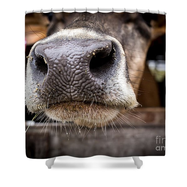 How About A Smack On The Lips? Shower Curtain