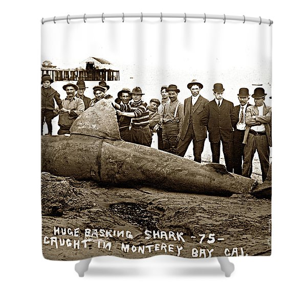 Huge Basking Shark Near Fishermans Wharf Monterey California Circa 1912 Shower Curtain