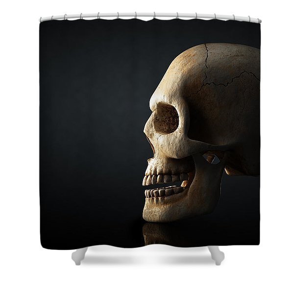 Human Skull Profile On Dark Background Shower Curtain