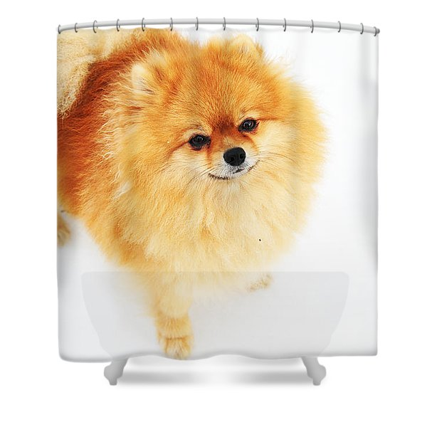 I Am Here I Shower Curtain