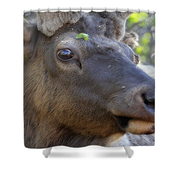 I Have What On My Face? Shower Curtain