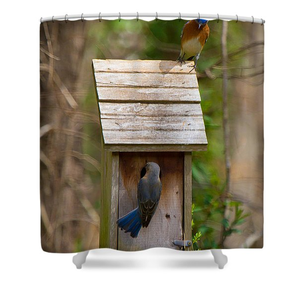 Shower Curtain featuring the photograph I Think I Like This One Honey. You Have To See The Inside by Robert L Jackson