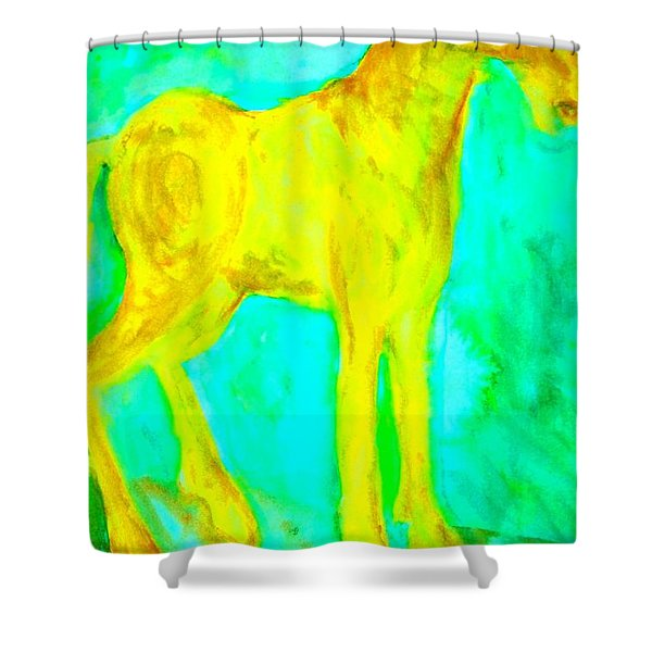 I Will Show You Everything But Will You See It  Shower Curtain