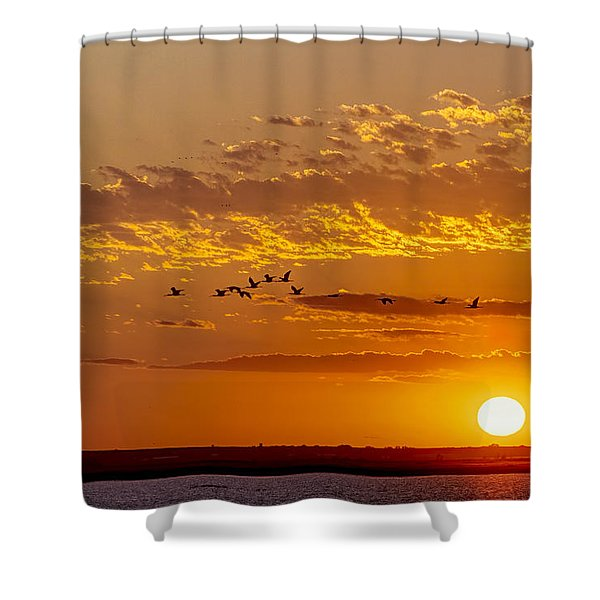 Shower Curtain featuring the photograph Ibis Flyover At Sunset by Rob Graham