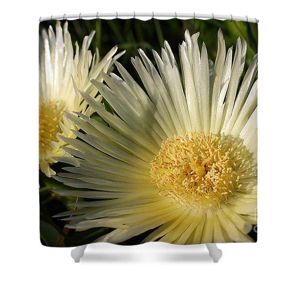 Ice Flowers Shower Curtain