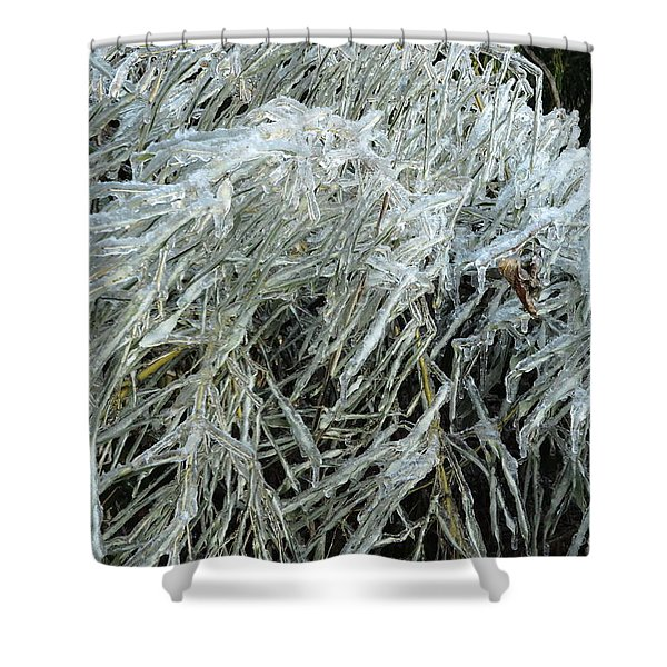 Ice On Bamboo Leaves Shower Curtain