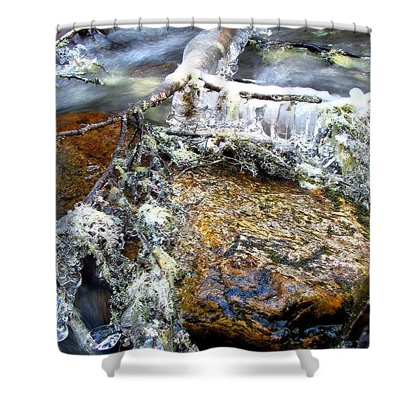 Ice Ornaments Shower Curtain