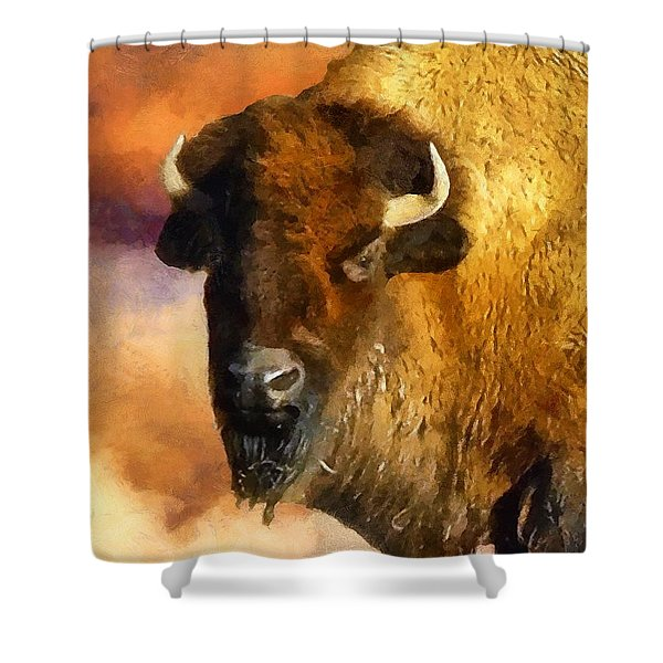 Icon Of The Plains Shower Curtain