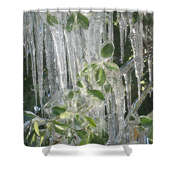 Icy Green Shower Curtain