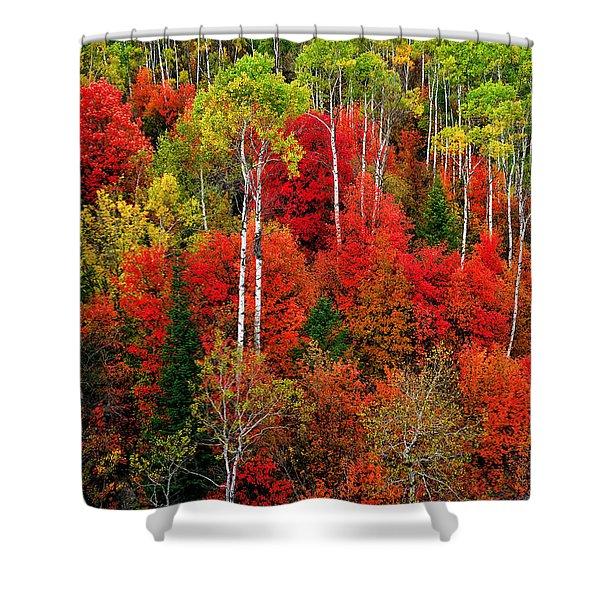 Idaho Autumn Shower Curtain