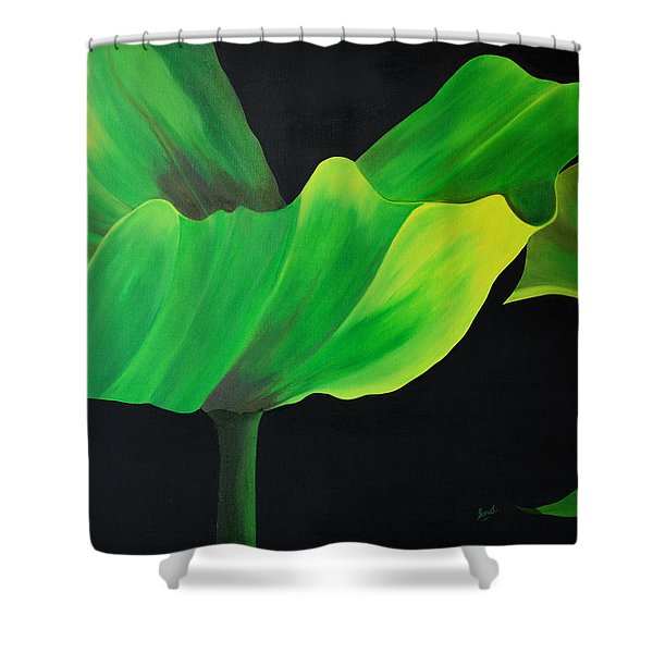 If Shades Could Speak Shower Curtain