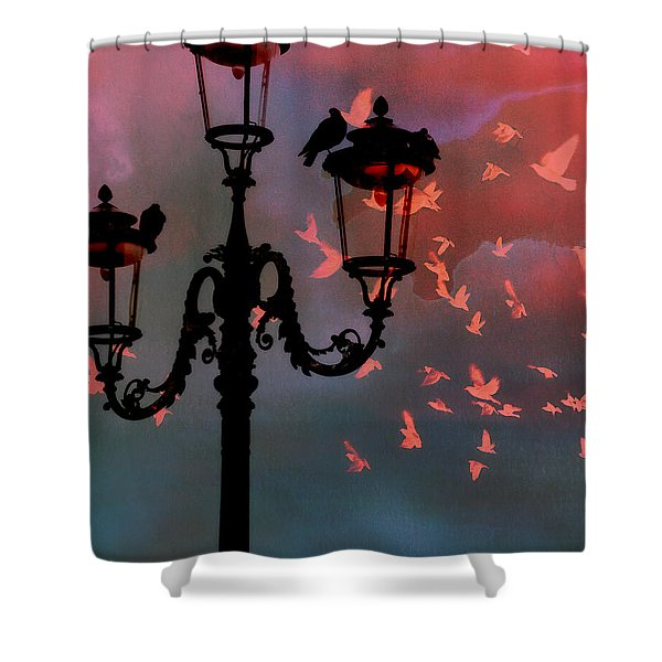 Il Volo Shower Curtain